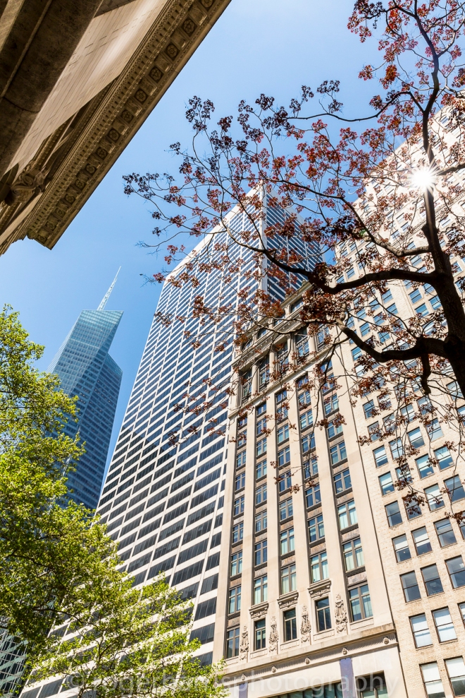 New York 0515 Blog-5