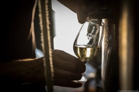 vineyard-blog-9